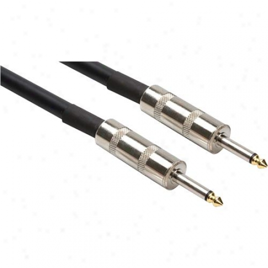 Speaker Cable, Hosa 1/4 In Ts To Same, 100 Ft