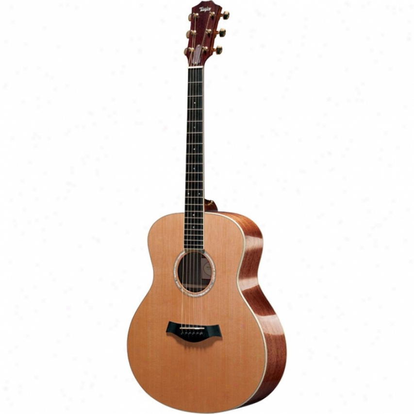 Taylor Guitars Gs5 Acoustic Guitar