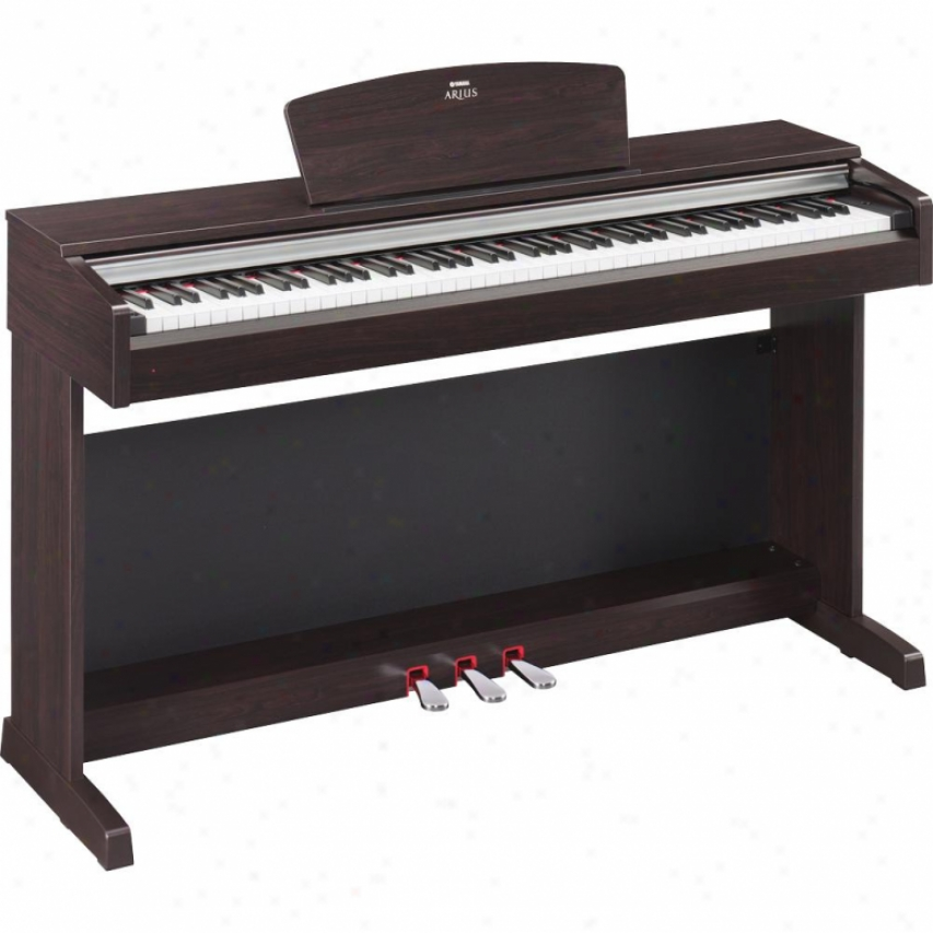 Yamaha Ydp-135r Arius Digital Piano