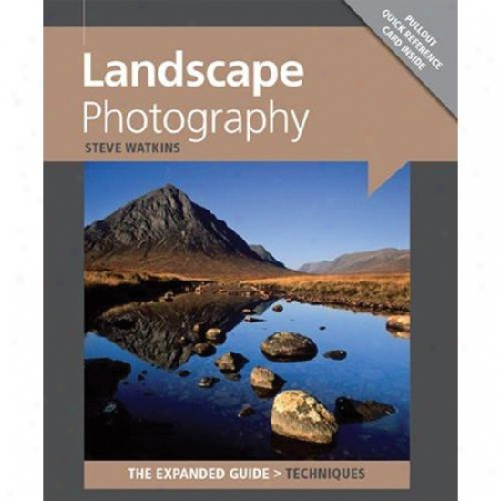 Ammonite Landscape Photography
