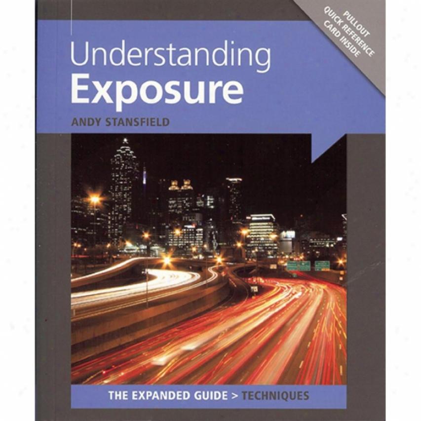 Ammonite Understanding Exposure