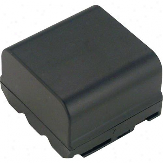 Battery Biz Camcorder Battery Sharp