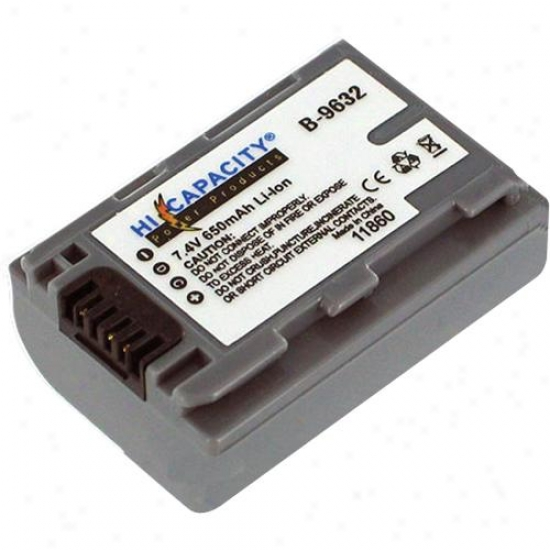 Battery Biz Camcorder Battery Sony