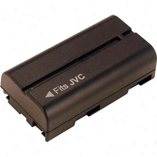 Battery Biz Camcorder Battery