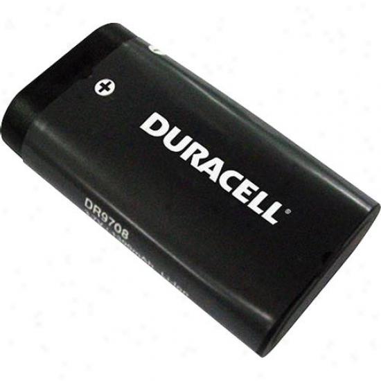 Battery Biz Camera Battery For Kodak/ricoh