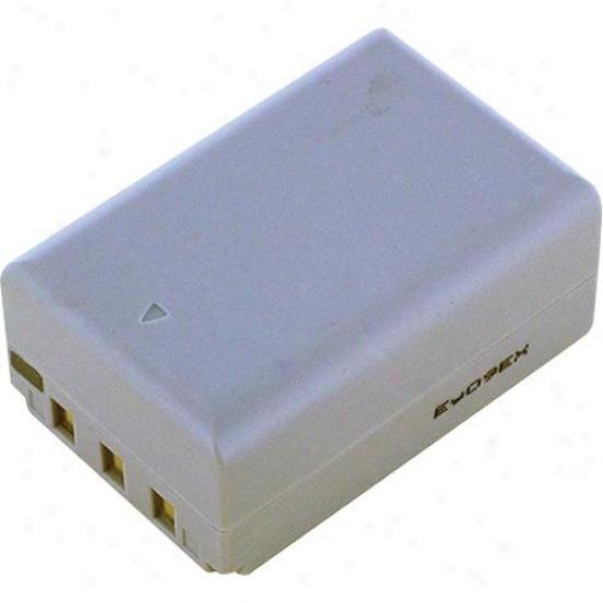 Battery Biz Casio Digitao Camera Battery