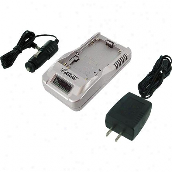 Battery Biz Goldstar Hi-capacity Charger