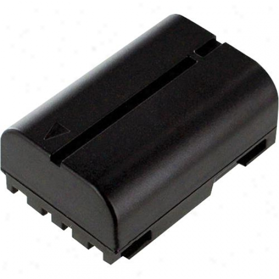 Battery Biz Jvc Camcorder Battery