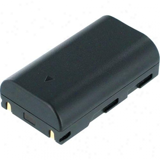 Battery Biz Samsung Camcorder Battery