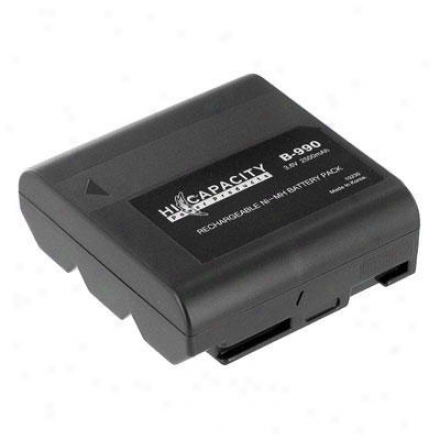 Battery Biz Sharp Camcorder Battery