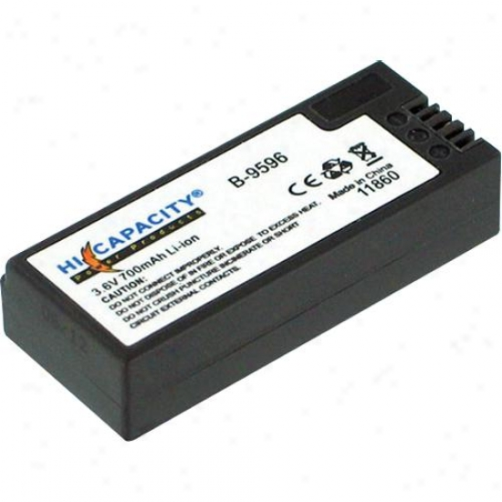 Battery Biz Sony Cyber-shot Battery