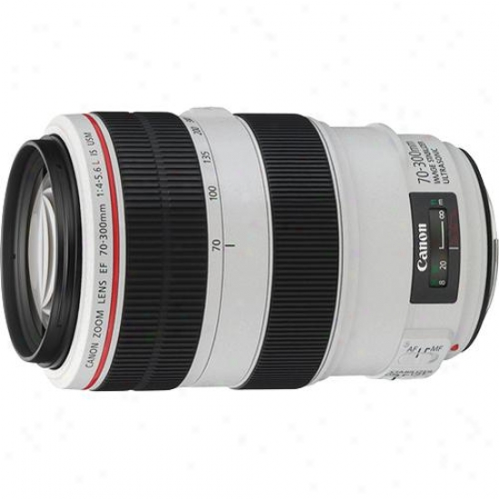Canon 70-30Omm F/4-5.6l Ef Is Telephoto Zoom Usm