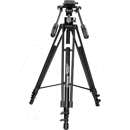 Davis & Sanford Provista 7518 Video Tripod And Head - Black