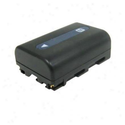 Lenmar Enterprises Battery Against Sony Dslr-a100 Cam