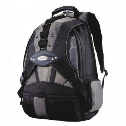 "Mobile Edge 17.3"" Premium Backpack Slv/bk"