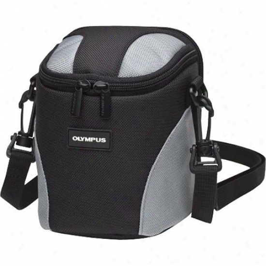 Olympus 202300 Nylon Ultra Zoom Case - Gray