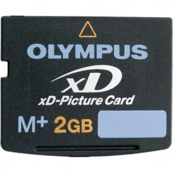 Olympus 2gb Xd Digital Memoru Picture Card
