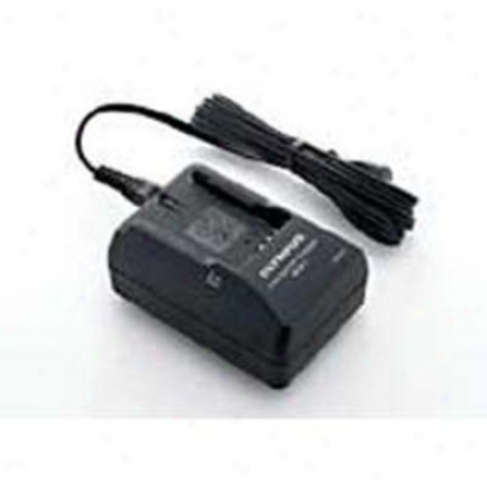 Olympus Bcm-01 Li-on Quick Charger