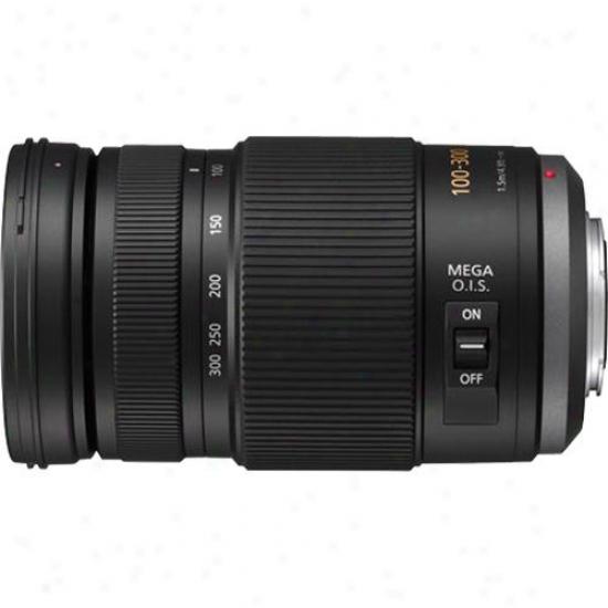 Panasonic 100-300mm F/4.0-5.6 Lumix G Vario Micro Four Thirds Lens - H-fs100300