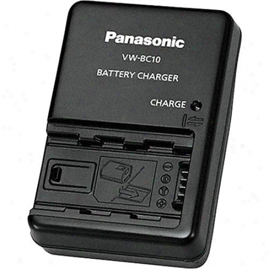 Panasonic Battery Charegr Vw-bc10