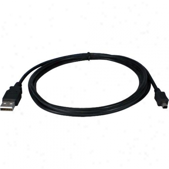 Qvs 6-foot Usb 2.0 Replacement Cable For Digital Camera - Cc2215m4-06