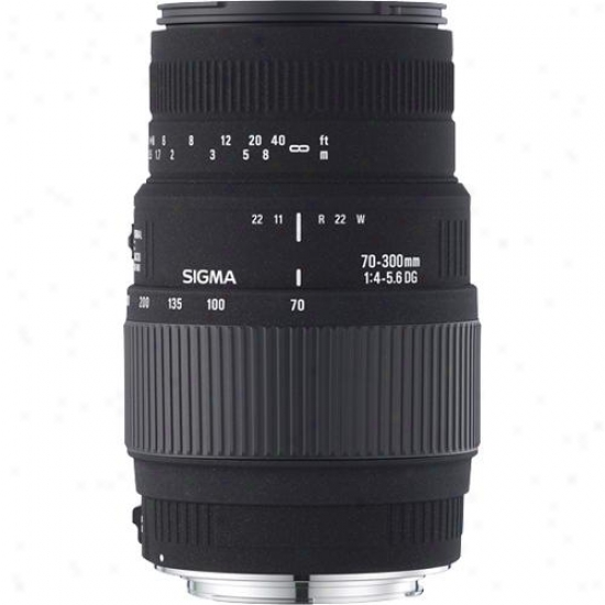 Sigma 70-300mm F/4-5.6 Dg Macro Nikon Telephoto Zook Lens