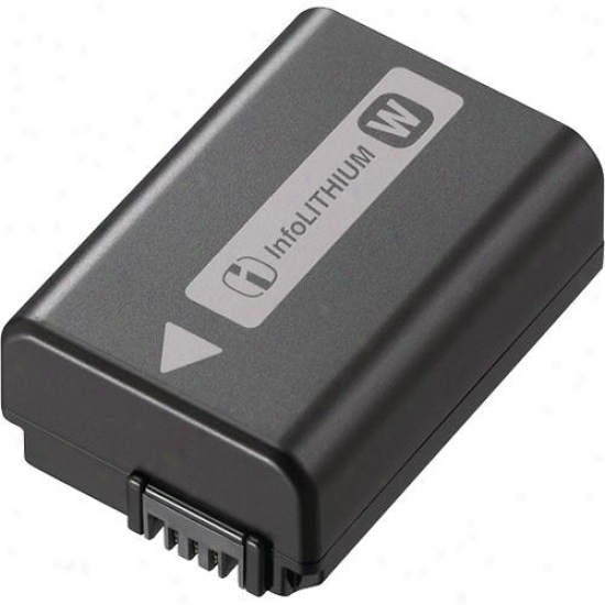 Sony Infolithium® W Series Battery Pack