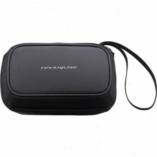 Sony Lcs-bba Compact Camera Bag Camcorder Carrying Pouch