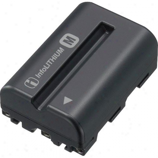 Sony Npfm500h Info-lithium M Battery For Alpha Slr