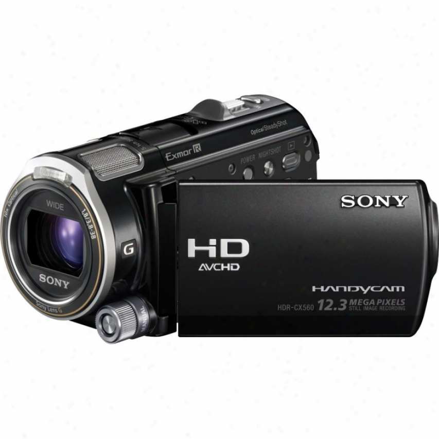 Sony Open Box Hdr-cx560v 64gb Fuull Hd Camcorder With Gps - Black