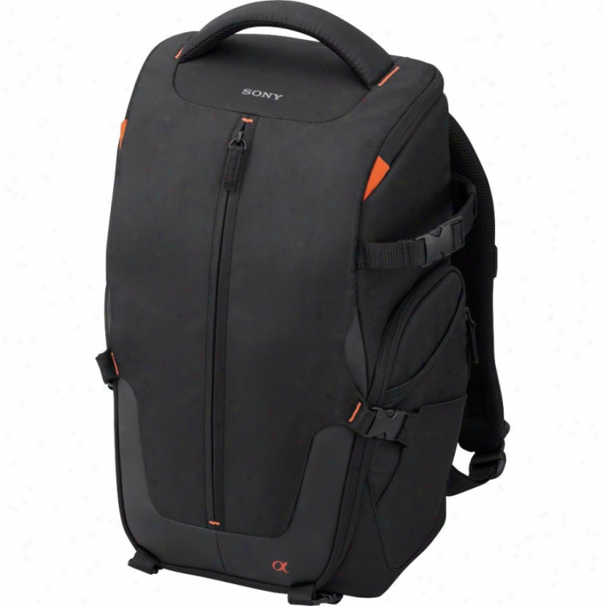 Sony Sony Lcs-bp2 Backpack Carrying Case For Cameras