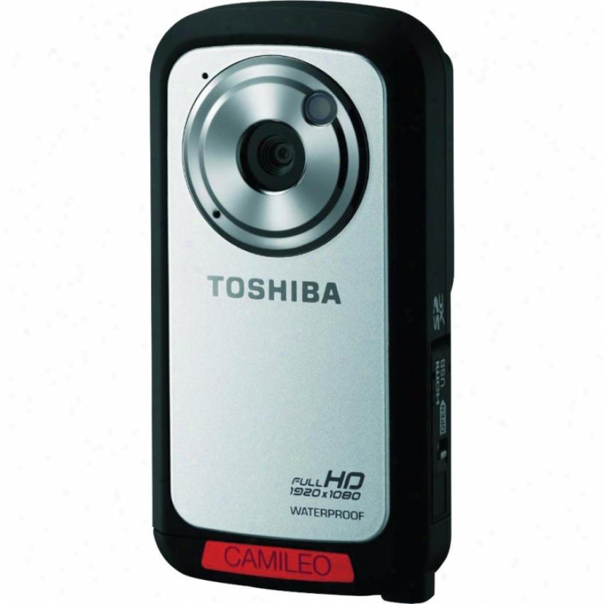 Toshiba Czmileo Bw10 Hd Camcorder Silver