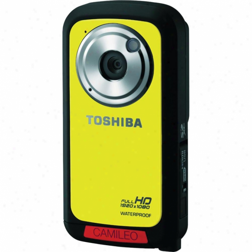 Toshi6a Camileo Bw10 Hd Camcorder Golden