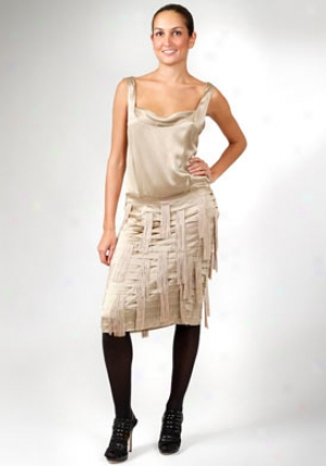 Alberta Ferretti Beige Silk Dress Dr-a0450117-hg-42