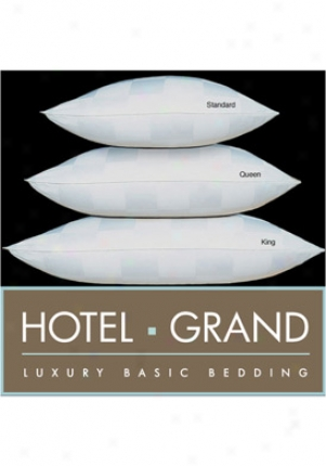 Hotel Grand D/p-11 White Euro Check 1000 Tc Damask Checm Pillow 214001