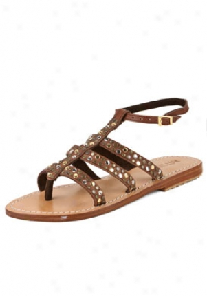 Mystique Brown Studded Flat Sandals 2454-brown-10