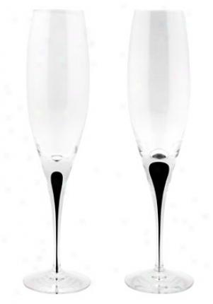 Orrefots Intermezzo Black Champagne Flute Glassds Set/22 6263091
