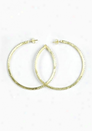 Sheila Fajl Cubic Zirconia All Sur~ Gold Hoops 40035