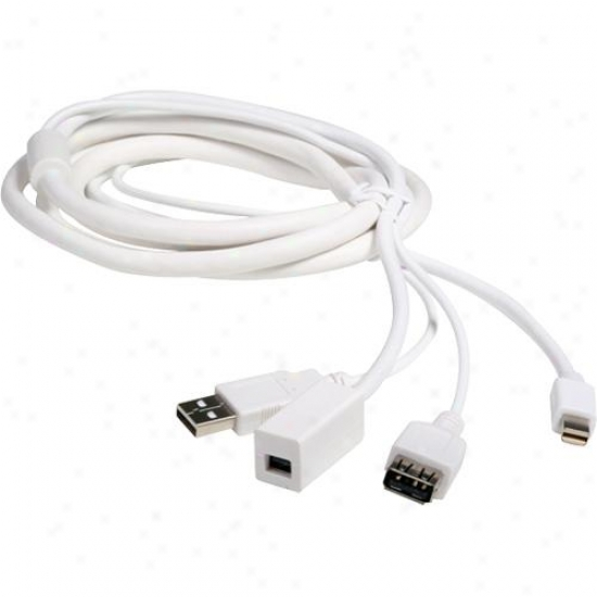 Atlona 6-foot Mini Displayyport + Usb Male/female Extensions Cable - White