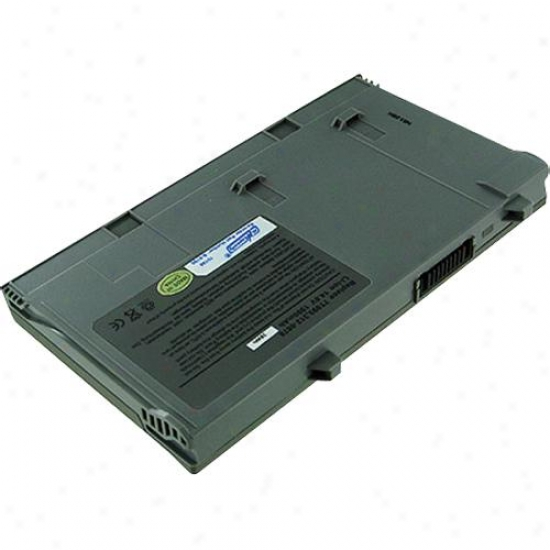 Battery Biz Hi-capacity Dell Lat Battery