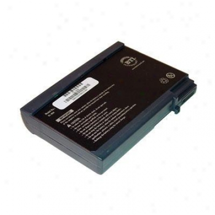 Battery Technologies Satellite 1095 Series Nimh