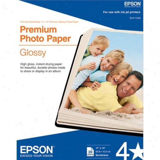 "Epson 11&quoot; X 14"" Annual rate  Glossy Paper (20-pack)"