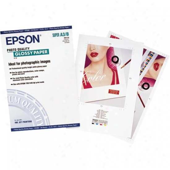 Epson 20-pack Of 13x19 Glossy Paper S041133