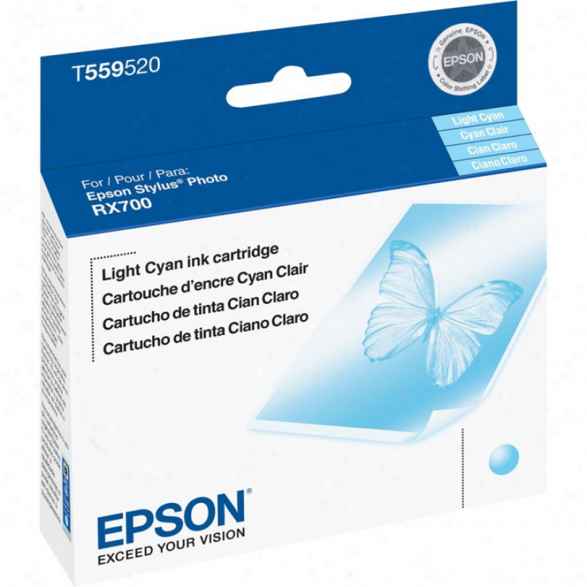 Epson Rx700 Light Cyan Ink Cartridge