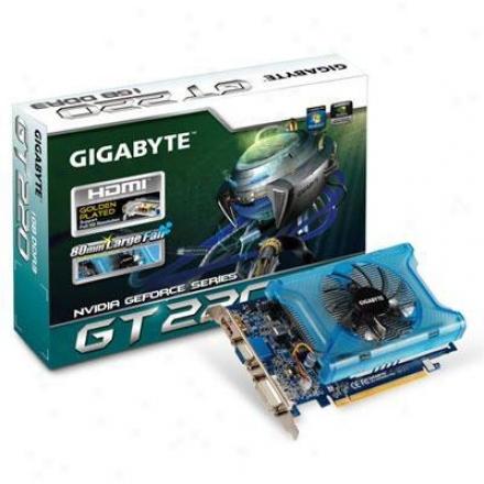 Gigabyte Geforce Gt220 Ddr3 1gb