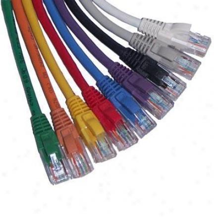 Goldx 100' Cat6 Patch Cable, Gray Gxpnc-6gy-100