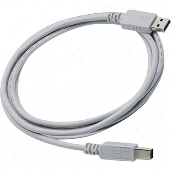Hp Usb 2.0 Printer Cable A-b - 9 Feet