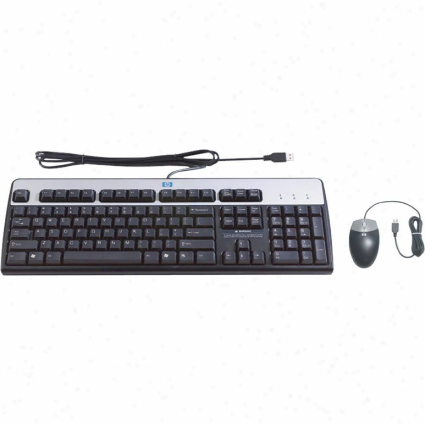 Hp Usb Keyboard/mouse Bundle