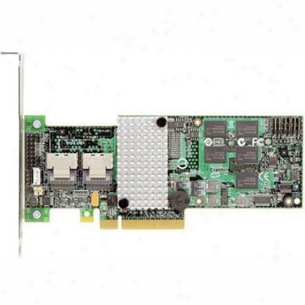 Intel Raid Controller Rs2bl08