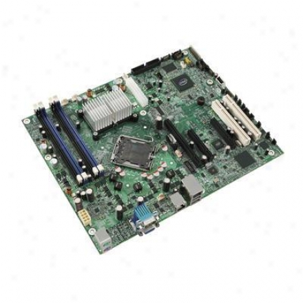 Intel S3210 Snowhill Shlx Serverboar